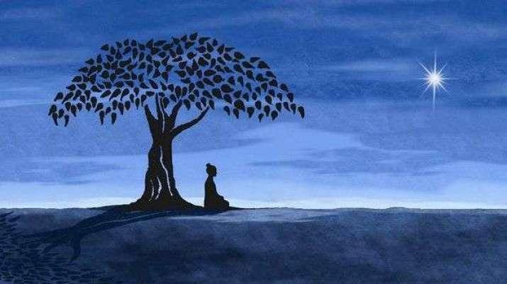 poetic-symbiosis-in-the-midst-of-global-deforestation-buddhistdoor-global.jpg